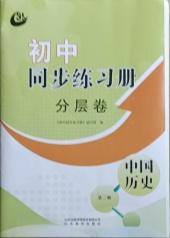 2021年同步练习册分层卷中国历史第二册人教版54制