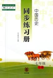 2020年中国历史同步练习册(试卷)