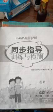 2019年同步指导训练与检测四年级政治上册云南专版