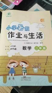 2019年小学暑假作业与生活二年级数学通用版(C)陕西人民教育出版社