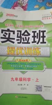 2019年实验班九年级科学上册浙教版