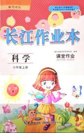 2020年长江作业本同步练习册六年级科学上册鄂教版