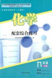 2021年化学配套综合练习九年级化学上册人教版