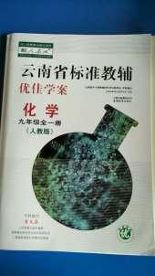 2020年云南省标准教辅优佳学案九年级化学人教版云南专版