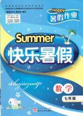 2021年快乐暑假七年级数学通用版武汉大学出版社