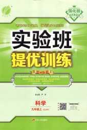 2021年实验班提优训练九年级科学上册浙教版