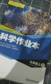 2021年作业本(B)九年级科学上册沪教版