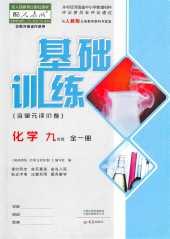 2021年基础训练(河南专版)九年级化学人教版