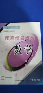 2020年配套综合练习甘肃九年级数学华师大版