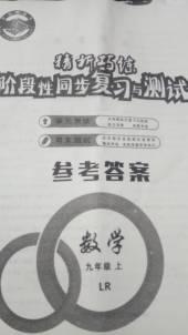 2020年精析巧练九年级数学上册鲁人版