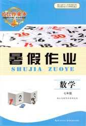 2020年长江作业本暑假作业七年级数学通用版湖北教育出版社