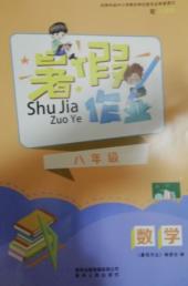 2021年暑假作业八年级数学人教版贵州人民出版社