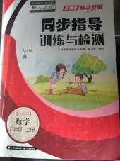 2021年云南省标准教辅同步指导训练与检测六年级数学人教版