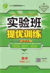 2020年实验班提优训练九年级数学上册沪教版上海专版