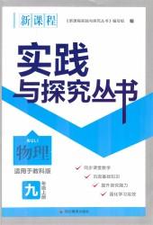 2020年新课程实践与探究丛书九年级物理上册教科版