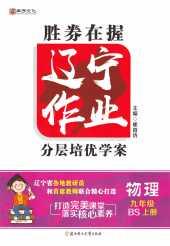 2021年辽宁作业分层培优学案九年级物理上册北师大版
